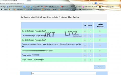 Generierung von Online-Fragebögen für das AKH Linz