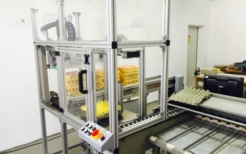 Eierförderanlage